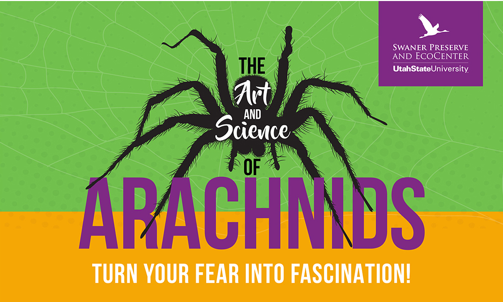 Art and Science of Arachnids Logo